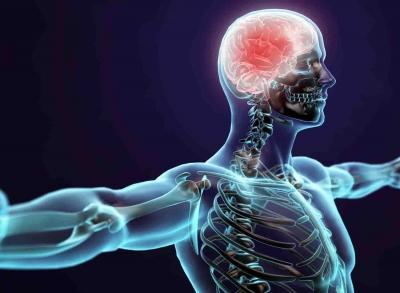 malattie dei nervi